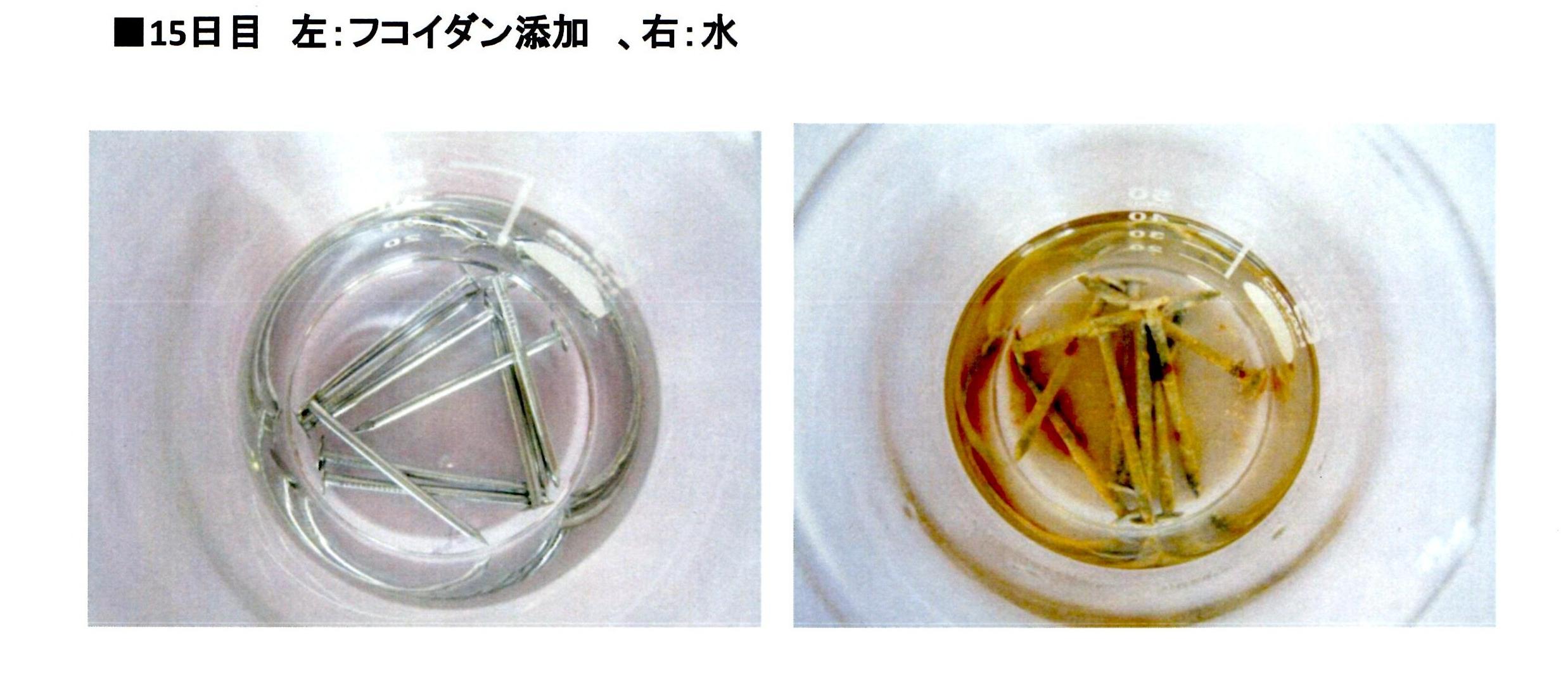 釘酸化防止試験