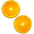 ハーブ6種⑤オレンジ